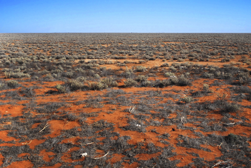 This is Nullarbor Plain